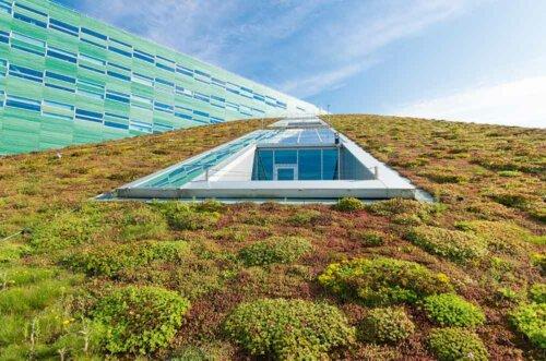 Klimaaktiv mit Dachbegrünung